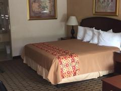 Americas Best Value Inn - Florence