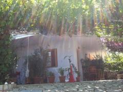 Araucaria Guesthouse