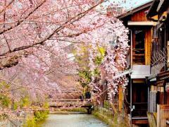 Bakpak Kyoto Hostel