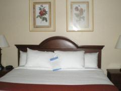 Baymont Inn and Suites Freeport