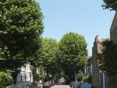 Brackenbury Apartments