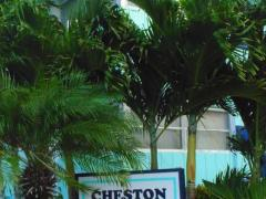 Cheston House - A Gay Resort