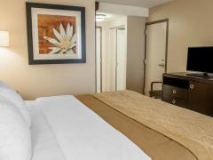 Comfort Inn Blue Ash