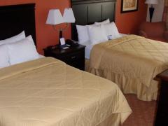 Comfort Inn Near UNT