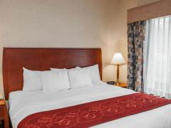 Comfort Suites South Elkhart