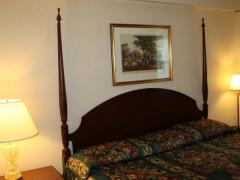 Econo Lodge Inn & Suites Windsor