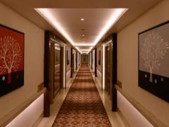 Golden Tulip Hotel Electronics City