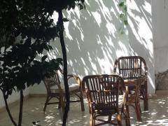 Guest House Damjana