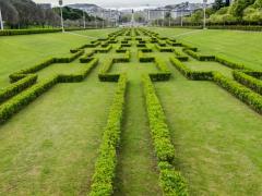 HF Fenix Garden