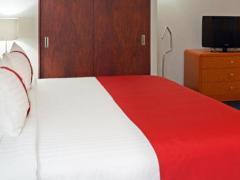 Holiday Inn Mexico Coyoacan