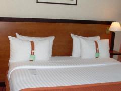 Holiday Inn Paris-Versailles-Bougival
