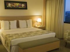 Holiday Inn Parque Anhembi