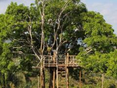 Hotel Ecológico Paraíso Carlisa