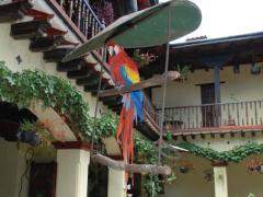 Hotel Museo Mayan Inn