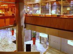 Mercure Grenoble Centre Alpotel