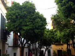 Puerta de Sevilla