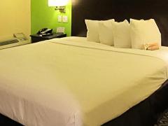 Quality Inn Nashville