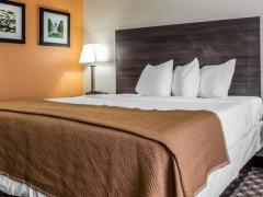 Quality Inn & Suites Columbia