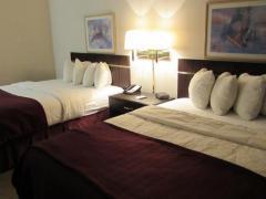 Quality Inn & Suites - Omaha