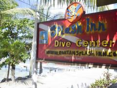 Splash Inn Dive Resort