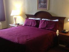 Venetian Inn and Suites Houston