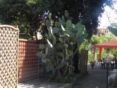 Villa Sole Luna
