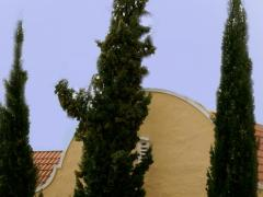 Villa Tarentaal