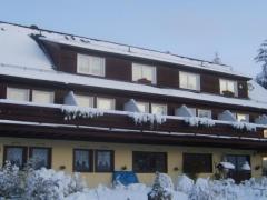 Wald-Landhaus